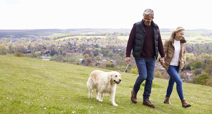 A father and daughter walking their Labrador in a green field